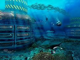 Grand cancun2