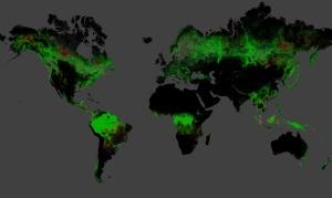 världens förlorade skogar