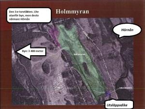 Holmmyran.