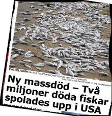 Daggstänkta berg & fiskarna i havet. (3/5)