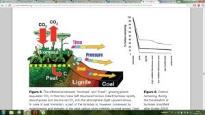 biomassa - torv- kol